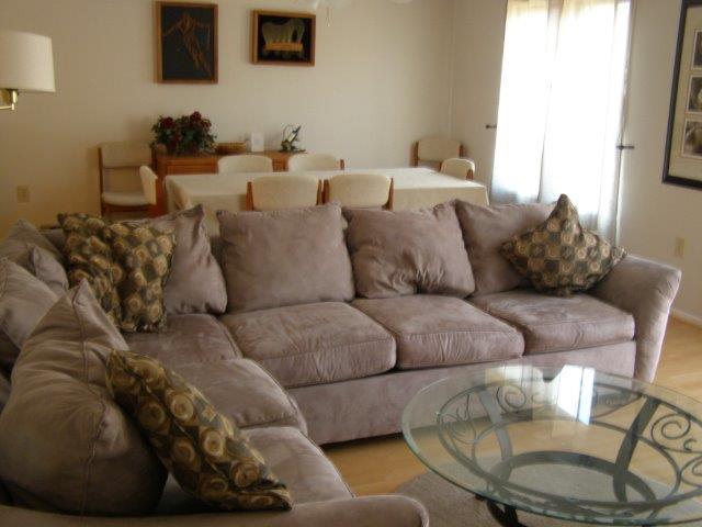 16B- Living Room Dining Area.jpg