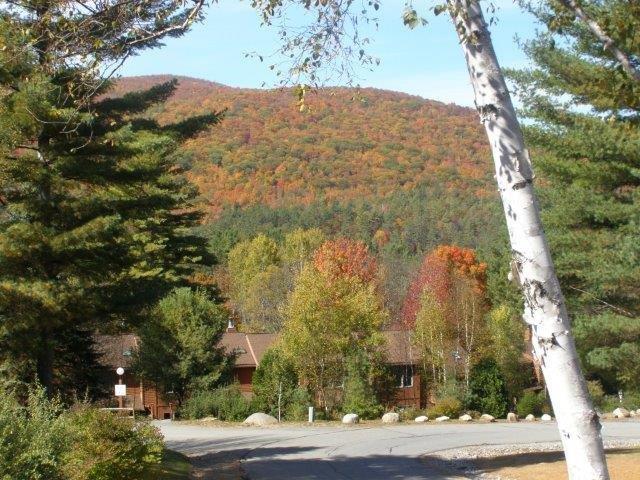 78I- Fall view10-3-13 5.jpg